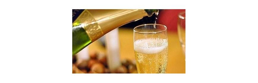 Copas Champagne o Cava
